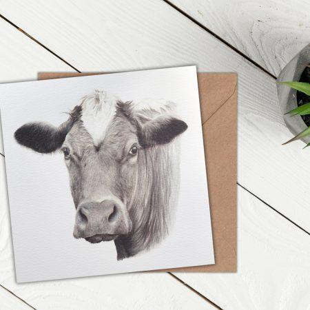 Cow Blank Greeting Card