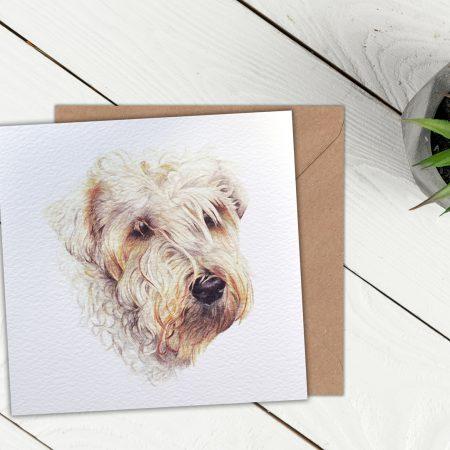 Wheaten Terrier Blank Greeting Card