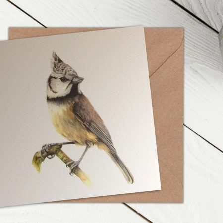 crested tit card