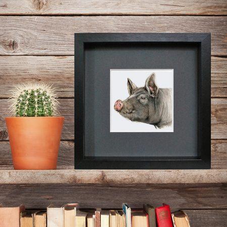 Berkshire Pig - Black Frame, Charcoal Mount
