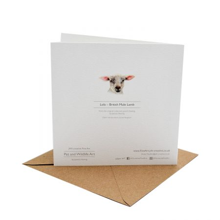 Lamb card back