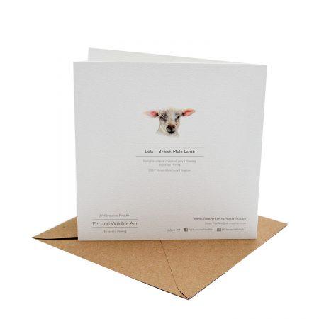 Lamb card back