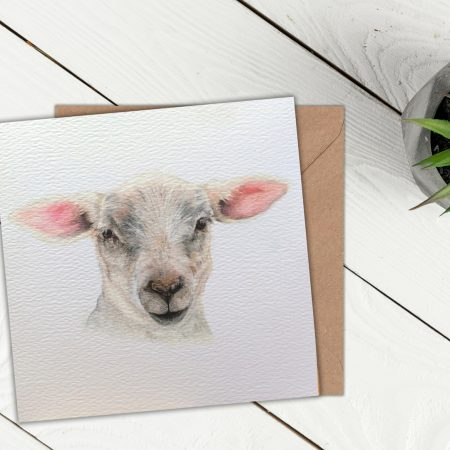 Lamb Blank Greeting Card