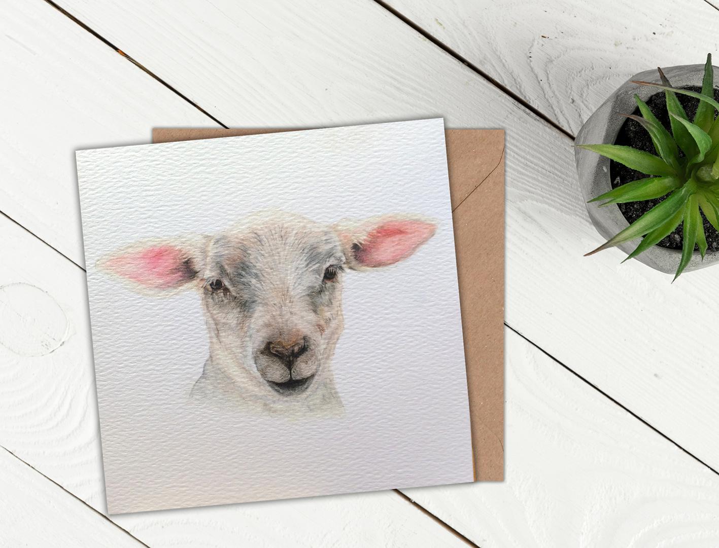 Lamb Greeting Card Jvh Creative Fine Art Coloured Pencil Art