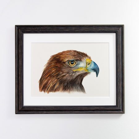 Golden Eagle Framed Black