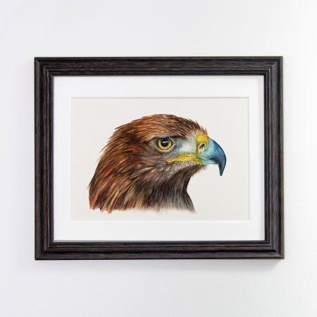 Golden Eagle Framed Black