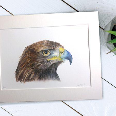 Golden Eagle Fine Art Print