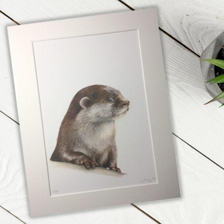 Otter FIne Art Print