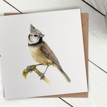 Bird Card Front