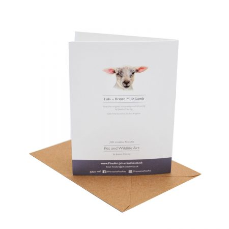 Lamb Birthday Card back
