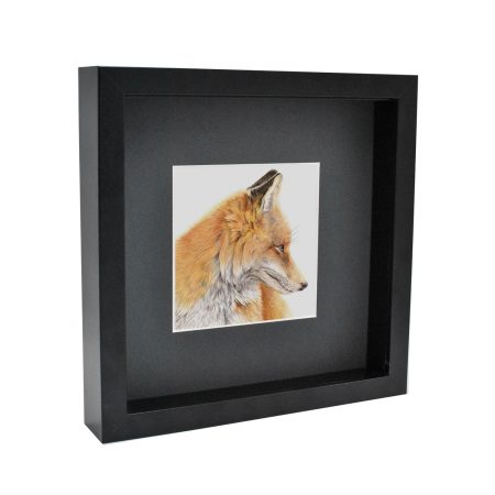 Box Framed Fox Print