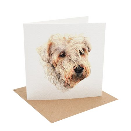 Wheaten Terrier Greeting card