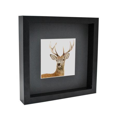 Box Framed Deer Print