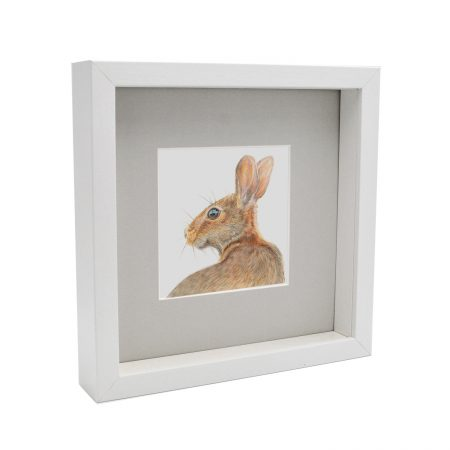 Box framed hare Print