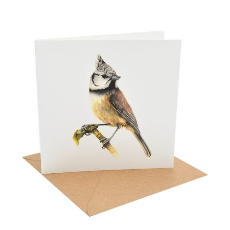 Crested Tit Greting Card