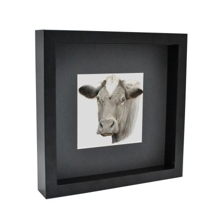 Box Framed Cow Print