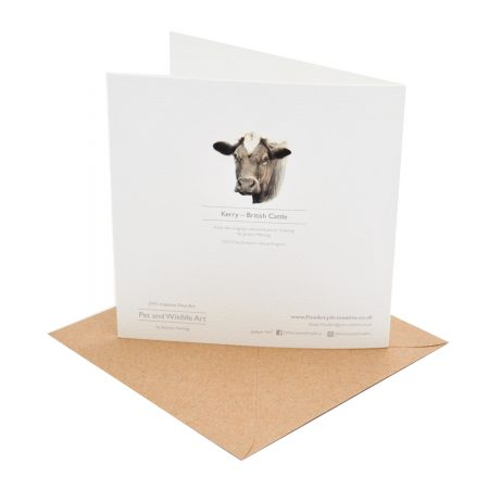 Cow Greeting Card Back