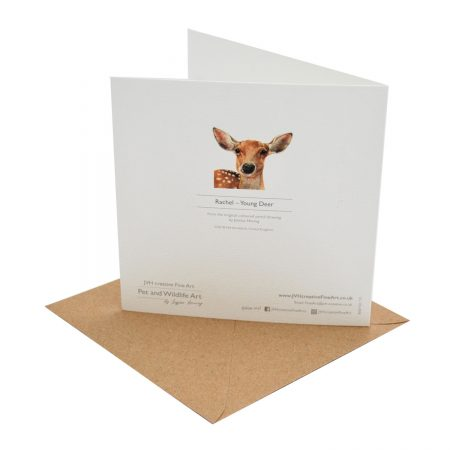 Young Deer Greeting Card Back