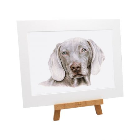 Weimaraner Dog Print