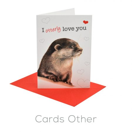 Cards Other