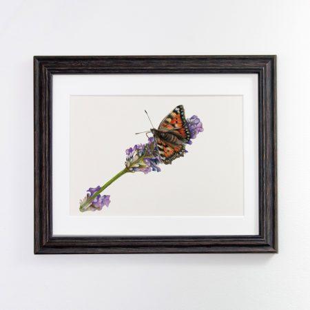 Butterfly black framed