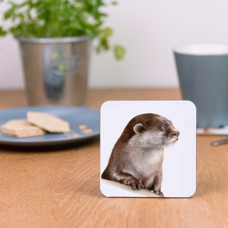 Otter Coaster