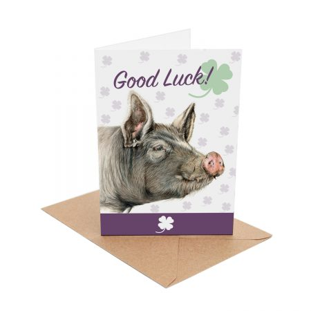 Berkshire Pig Good Luck Card