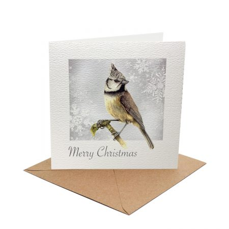 Bird Christmas Card