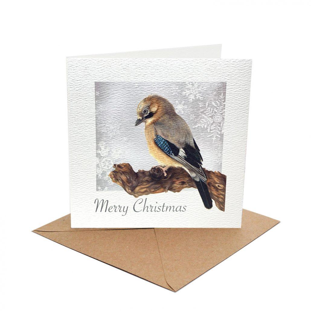 jay christmas card