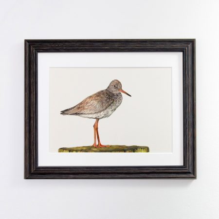 Redshank black framed