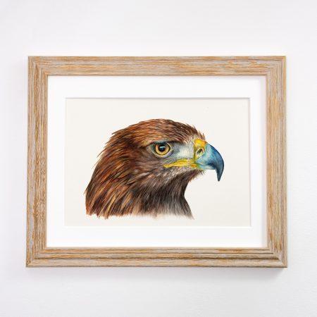 Golden Eagle Framed Tan