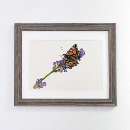 Butterfly Framed grey