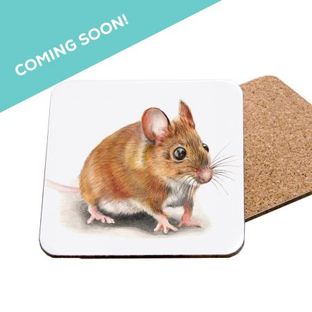 Mouse Coaster Coming Soon