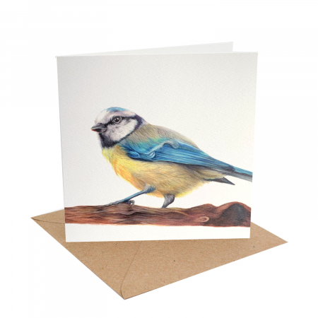 Blue Tit Blank Card