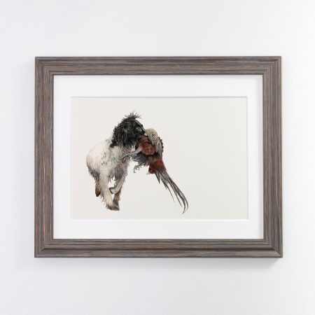 Working Spaniel Print Dark Framed