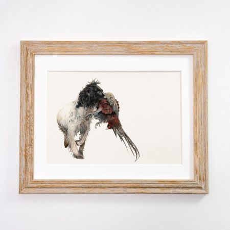 Working Spaniel Light Framed