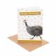 Guinea Fowl Birthday Card