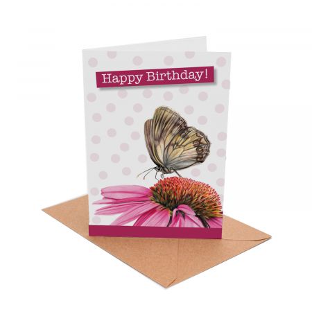 Echinacea Birthday Card