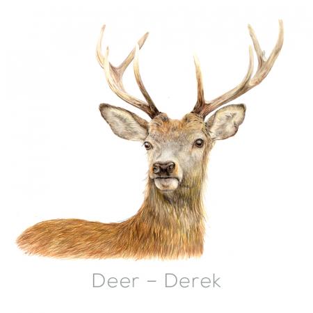 Stag –Derek