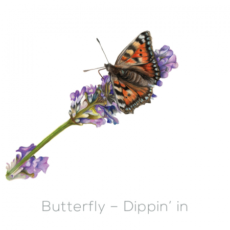 Butterfly – Dippin' in