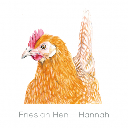 Hen – Hannah