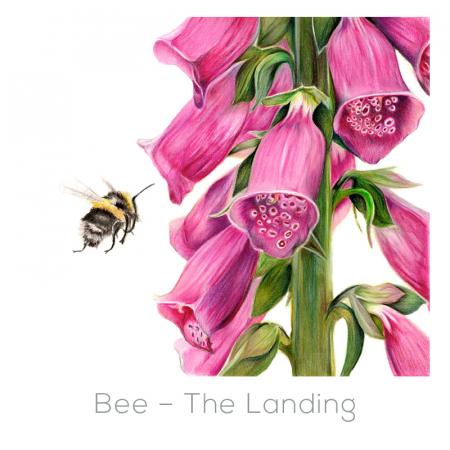 Bee – The Landing