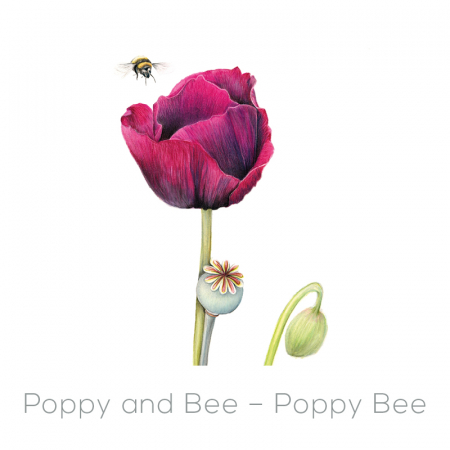 Bee – Poppy Bee